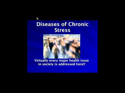Understanding Stress - How to live a long healthy life!