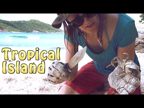 Catch n Cook - Ghost Crabs - Tropical Island Part 5 of 14