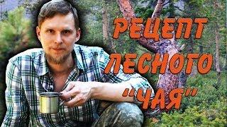 """РЕЦЕПТ лесного ЧАЯ """"Тайга""""."""