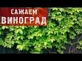 ФАЗЕНДА-2012.09.23 - Фрагмент 3.