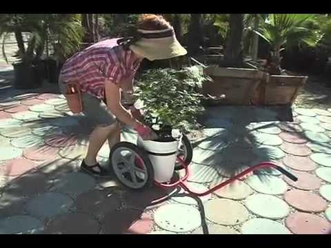 The Broll 5 Gallon Bucket Cart