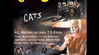 Cats - Czech Cast (Prague) - The Journey to the Heaviside Layer
