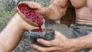 How to Make Delicious Primitive Pomegranate Juice