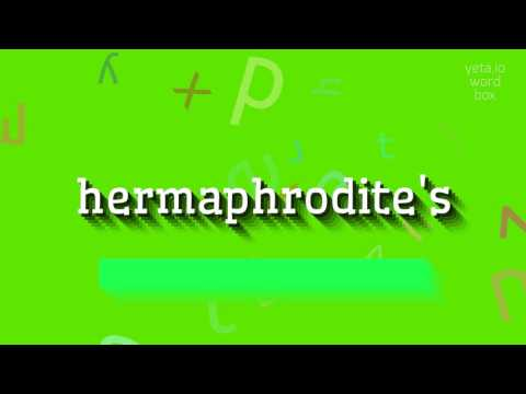 "How to say ""hermaphrodite"