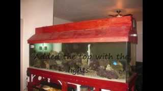 255 Gallon ~ Custom Salt Water Reef Fish Tank Aquarium