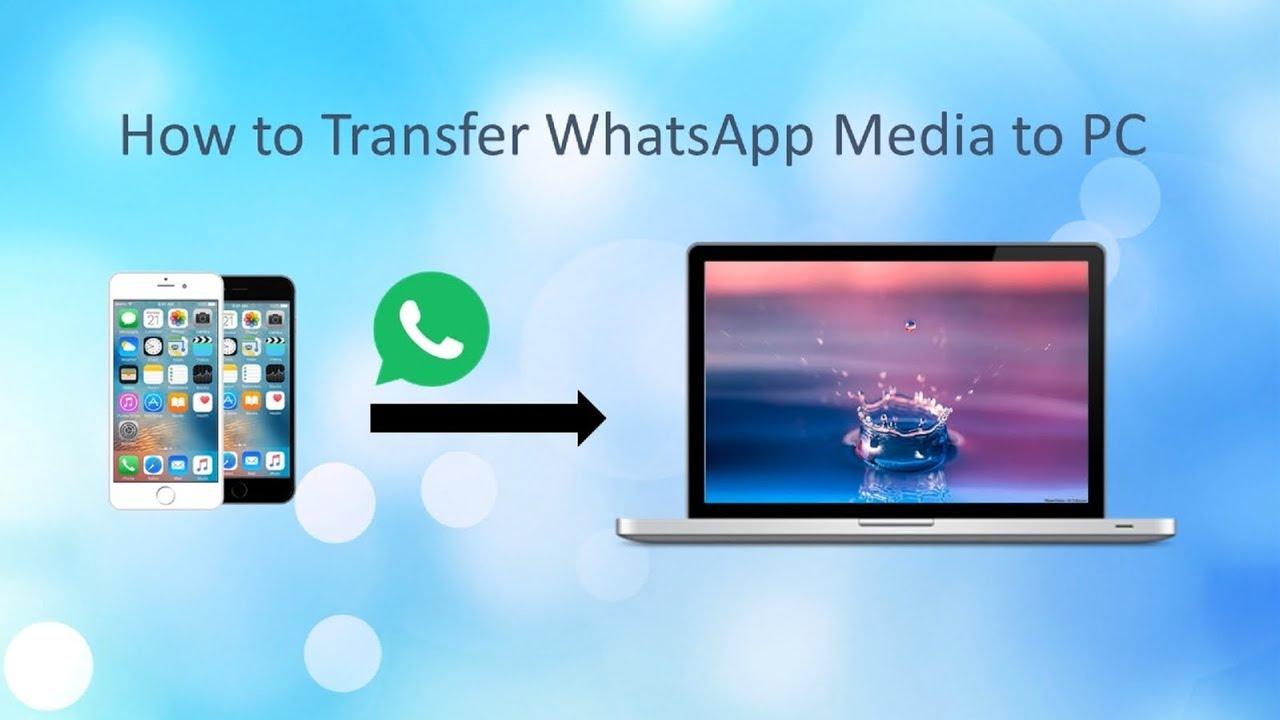Optimal Ways to Export WhatsApp Media to PC
