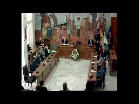 Pleno Día de Andalucía febrero 2021