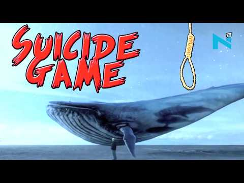 Blue Whale' online game designed to kill:  Features