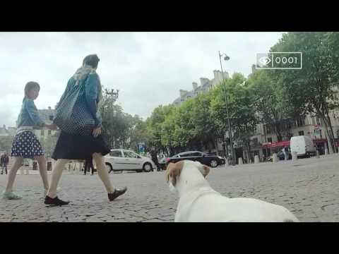 "Depaul France ""Just One Look"" (Publicis Conseil)"