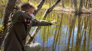 НАШЕЛ БОЛЬШУЮ СТАЮ РЫБЫ на ЛЕСНЫХ ОЗЕРАХ Рыбалка с рогаткой в красивейших местах