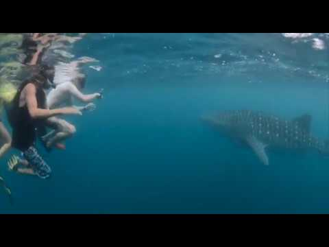 Crystal Land Tour: Ningaloo
