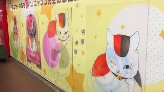 ニャンコ先生in新宿駅.
