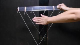 おもしろ科学実験「念力振り子」の記録動画です。