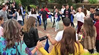 Flashmob in Targoviste