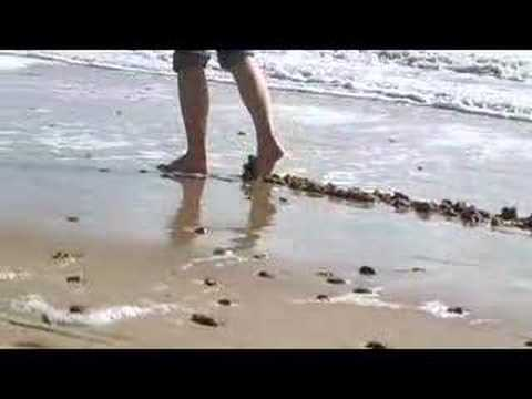 Sandline