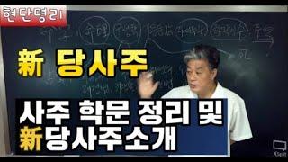 [현단명리] 新당사주 소개 / 각종 사주학문 정리