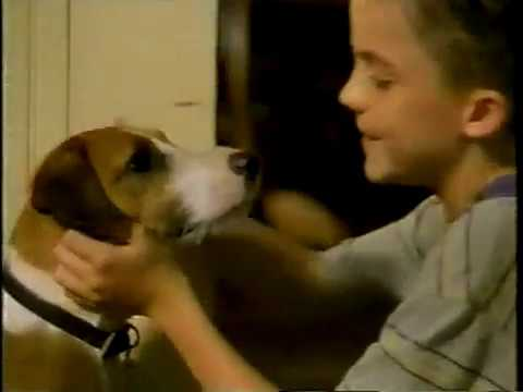 July 2000  'My Dog Skip' Comes to Home Video