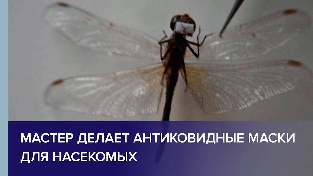 Мастер из Омска делает антиковидные маски для насекомых