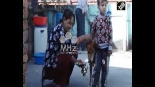 Nepal News - Festival of dogs 'Kukur Tihar' observed across Nepal