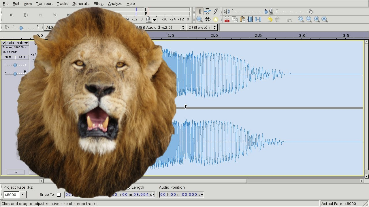 Creating Cool Lion Roar Sound Effects : DIY Audacity ... - photo#15