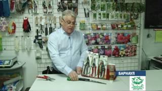 видео Обрезка деревьев в Барнауле, обрезка садовых плодовых деревьев и кустарников