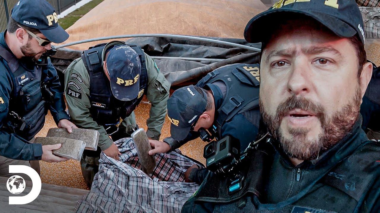 Ocultação dentro de carga de milho | Operação Fronteira: América do Sul | Discovery Brasil