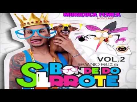 BONDE DO SERROTE  2015 CD O DESTRUIDOR DE PAREDÕES VOL 02 CD COMPLETO