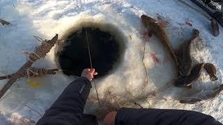 Рыбалка Просто супер улов 7