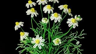 Мастер класс (Авторский) Ромашка аптечная Цветы из бисера Beaded flowers tutorial