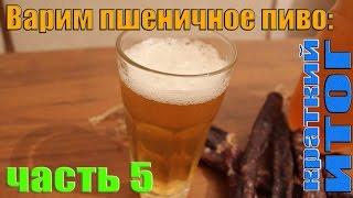 Варим пшеничное пиво: часть 5 (краткий ИТОГ)