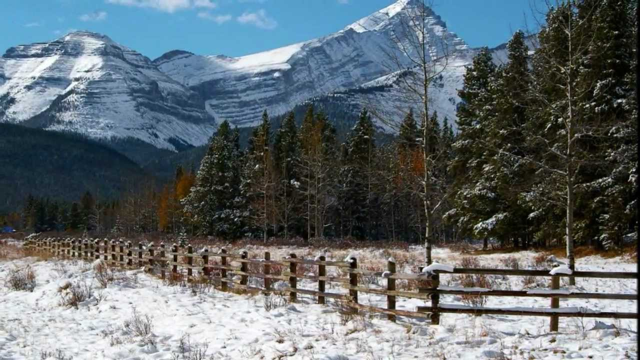 Winter scene - beautiful Alberta landscapes with great Christmas ...