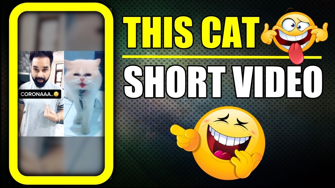 Corona ja na yahan se ab 😆 Funny Cat #shorts Video | Harpreet SDC