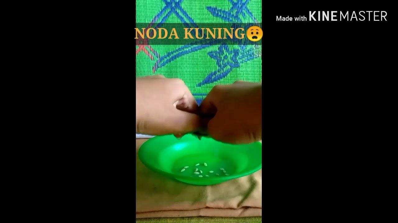 CARA MENGHILANGKAN NODA KUNING DI BAJU PUTIH - YouTube