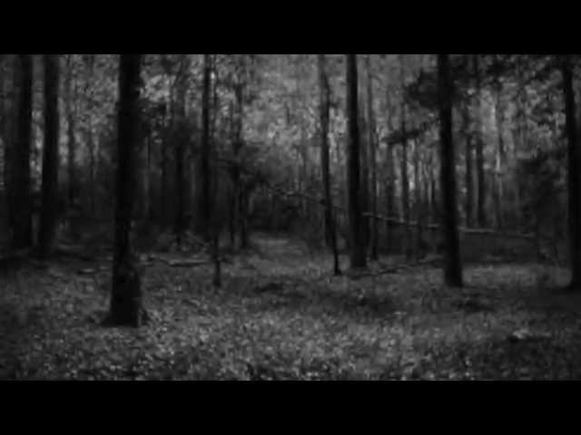 "OFFICIAL Terin Thompson ""SLEEPIN"" Trailer 2014"