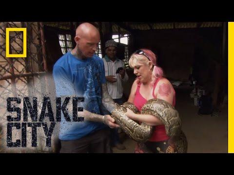 Twisted Python  Snake City