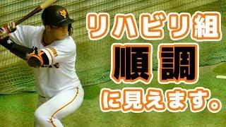 【巨人二軍】ジャイアンツ球場の練習見学。阿部慎之助 THE LAST RUN  恩返しTシャツ着用