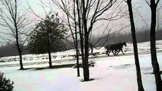 Amish Neighbor Passes By On Snowy Road
