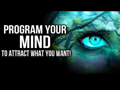 How to REWRITE Your Internal Programs to Attract What You Want! POWERFUL Law of Attraction Exercise