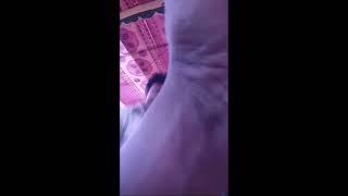 Bicitra Dance||Jatra Dance