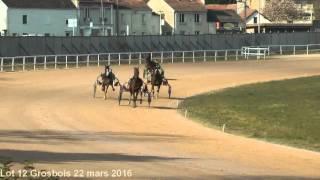 Lot 12 Grosbois 22 mars 2016