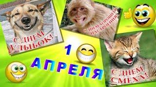 1 апреля -праздник смеха Веселое поздравление с Днём смеха 1 апреля