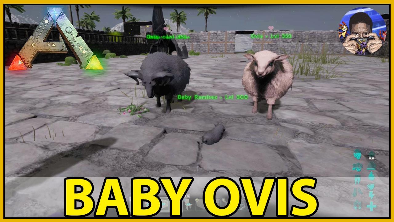 BABY OVIS - ARK: Survival Evolved - LOST ARK - [S4:E8]