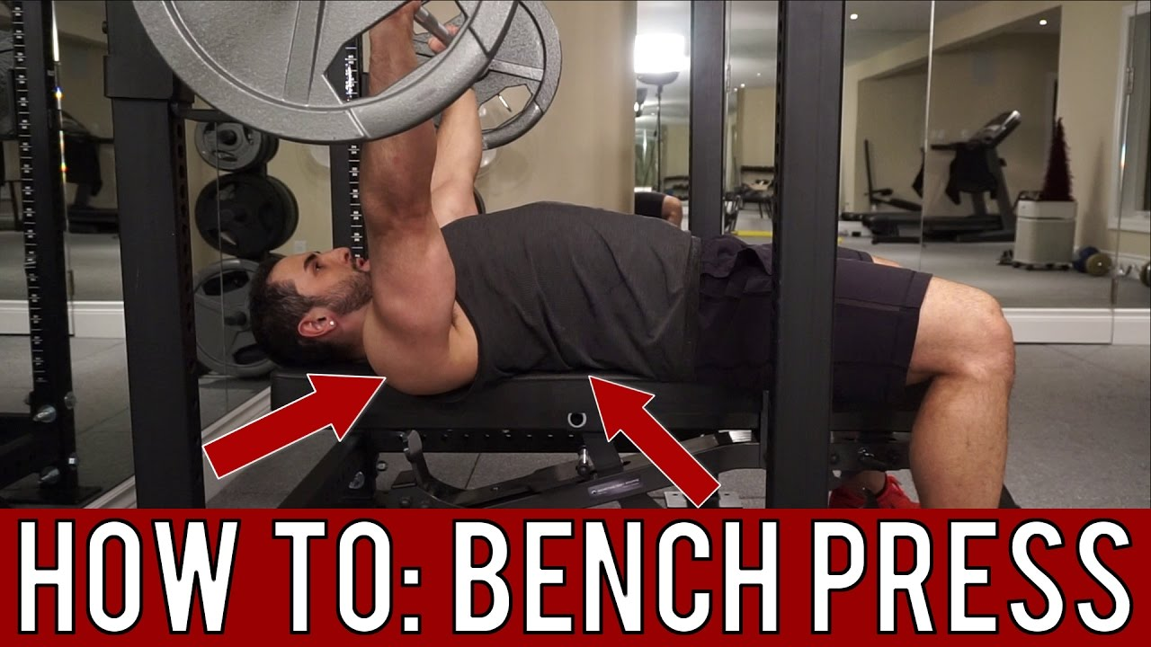 How To: Barbell Bench Press U2013 Proper Form Tutorial   YouTube