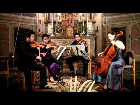 Maurice Ravel - String Quartet in F - 1. Allegro moderato - Très doux
