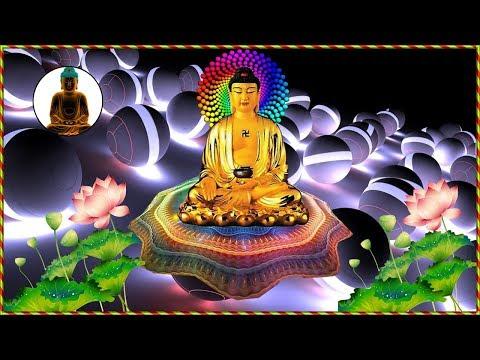 Ai Nghe Tụng Kinh Phật Này Mỗi Tối Ngủ Ngon Lắm Gia Đạo Bình An May Mắn thumbnail