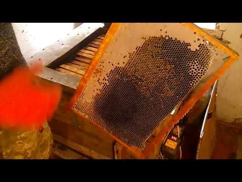 Что делать если мёд в рамках закристаллизовался