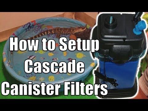 Unboxing & Installing Cascade 1000 Filter For My Alligator