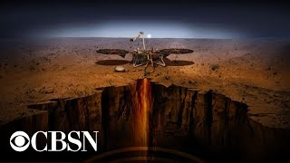 NASA InSight landing: Watch as the spacecraft successfully lands on Mars