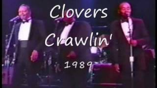 Clovers From a concert 1989.