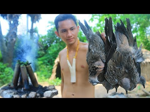 Primitive Technology with Survival Skills Hunting Birds ( Dove ) Cooking For Food